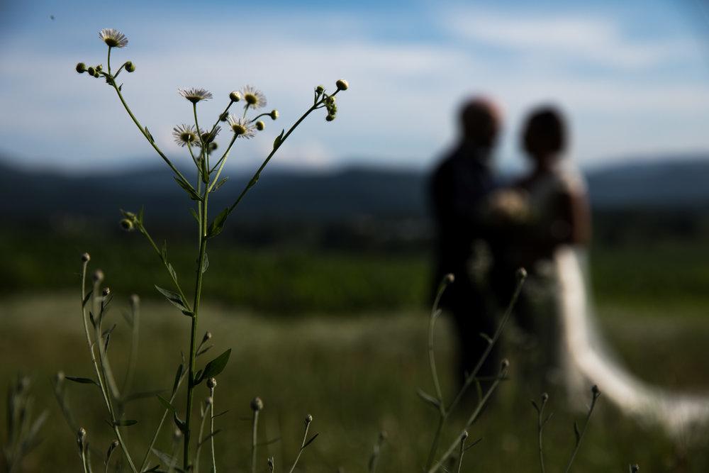 Danielle and Jim Shenandoah Valley Woods Wedding-39.jpg