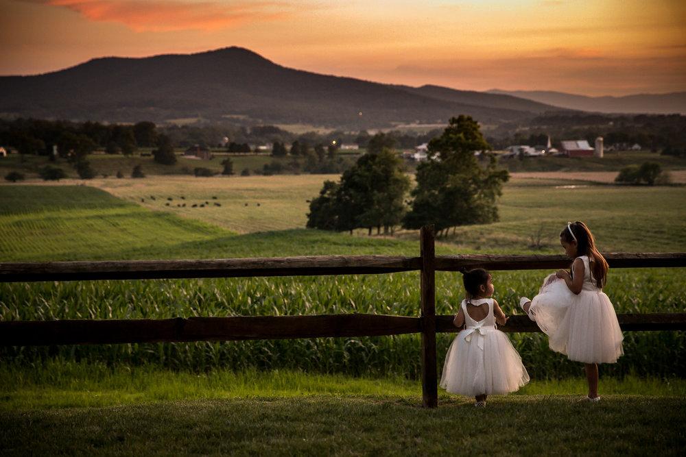 Flower Girls on fence, Shenandoah Woods Virginia Wedding