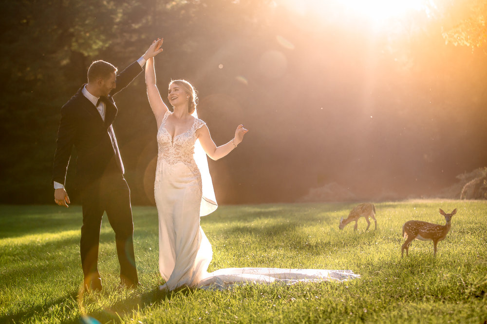 Wedding couple posing at sunset with deer in a field, Evergreen Museum Baltimore MD