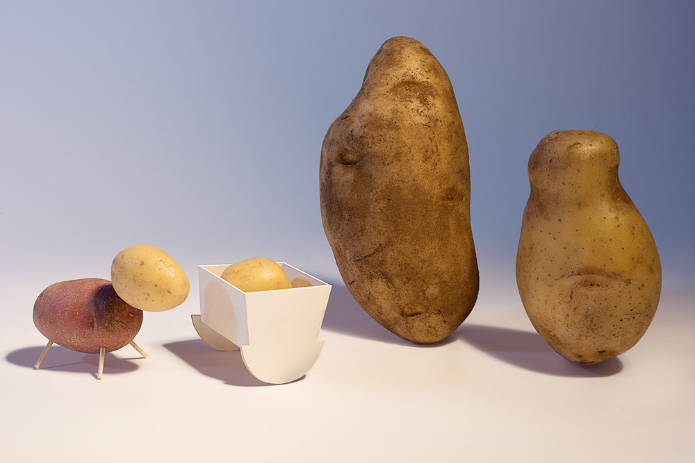 potato_family.jpg