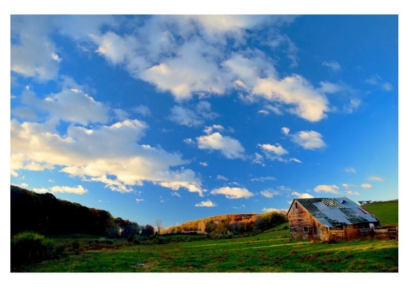 farm photos (2).jpg