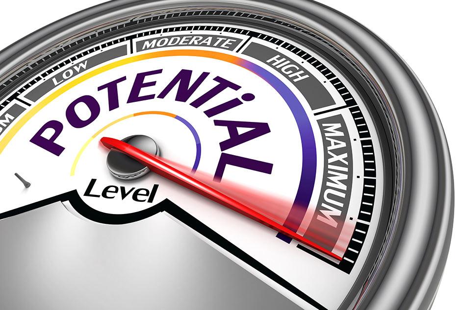 performance development -