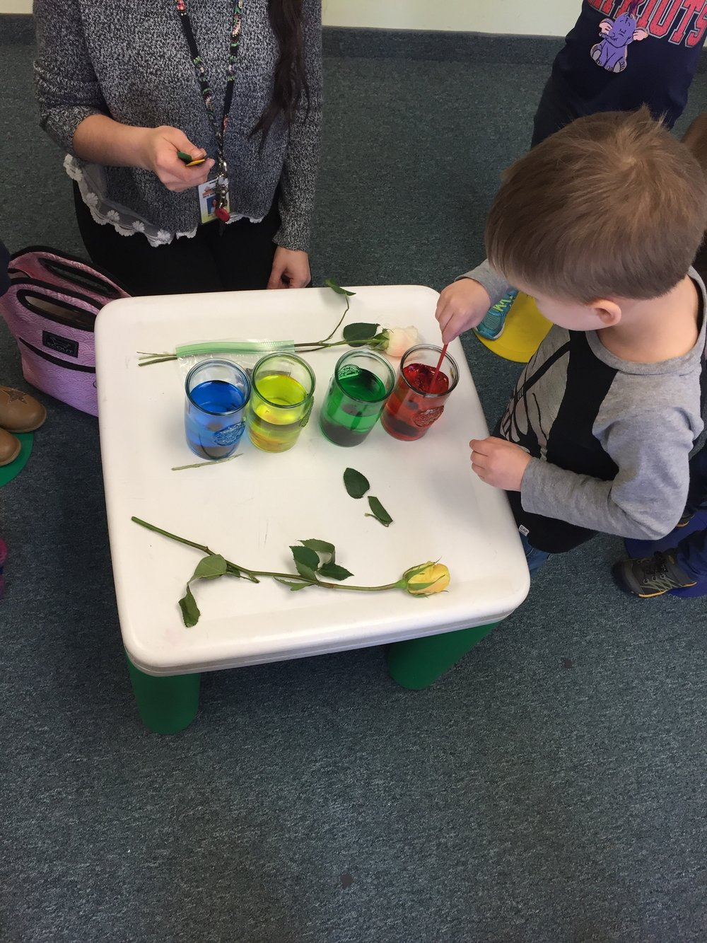 Mrs. Murray's Nursery School - Science