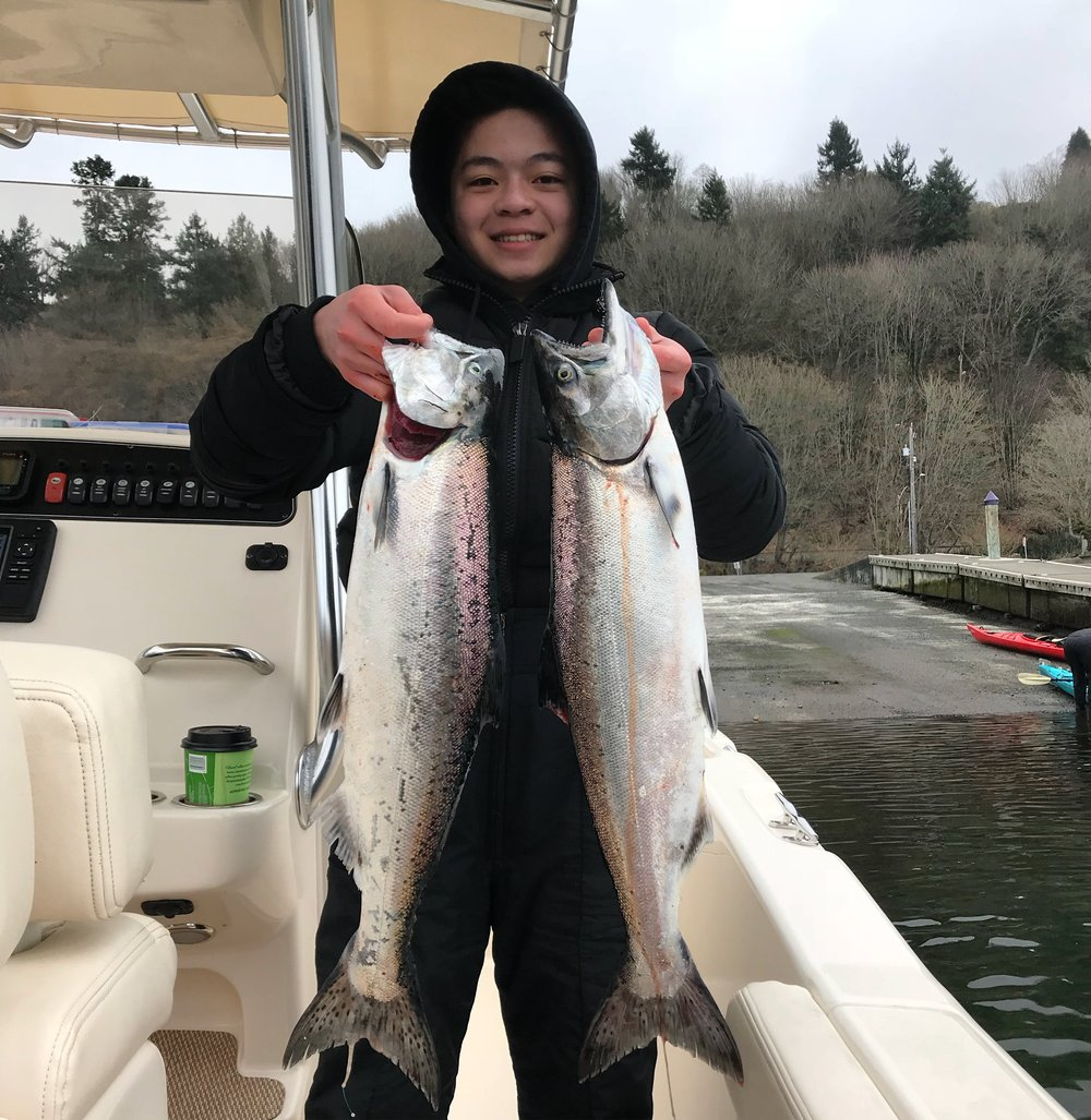 Young Fisherman hoisting up a couple fish from a good day of limits on the Puget Sound