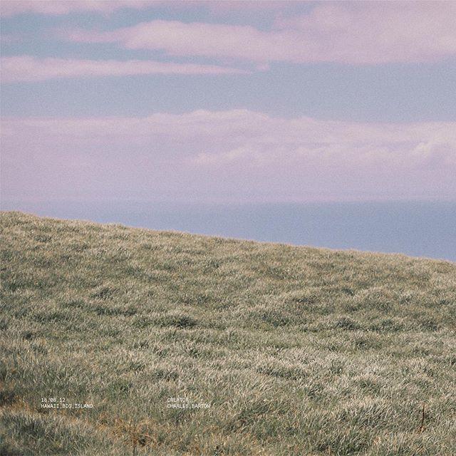 Grassy.