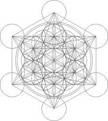Metatrons-Flower
