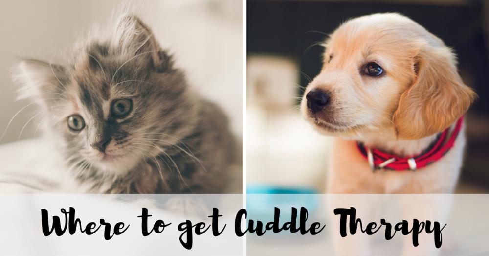 cuddles (1).png