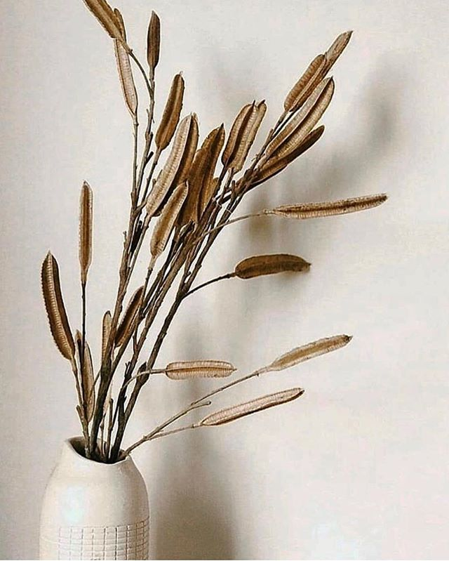 Home Details//• . via @thathollandlife . . . . . #interiors #homestyle #hyggehome #decor #interiorinspiration #details #ceramics #naturalhome #designerstyle #home #curatedliving #slowlife #simpleliving #bhavananook