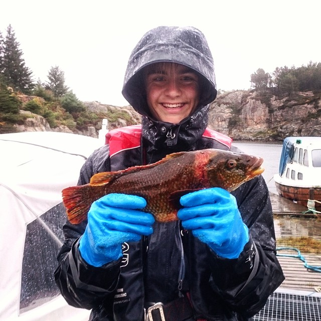 Arbeidsuke med marinbiolog Pia, her etter garntrekk fra Øygarden Foto: Pia Ve Dahlen