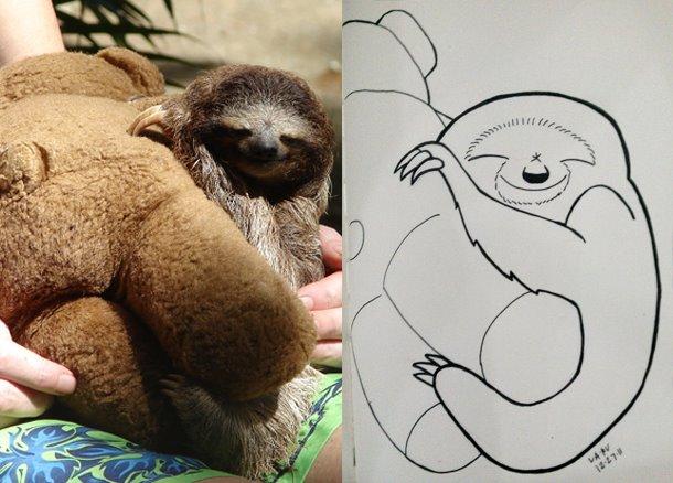 sloth2.jpg