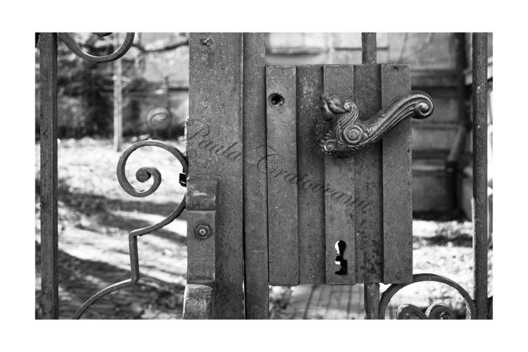 art nouveau iron gate 2_paula craioveanu_bw photo_17x21in.jpg