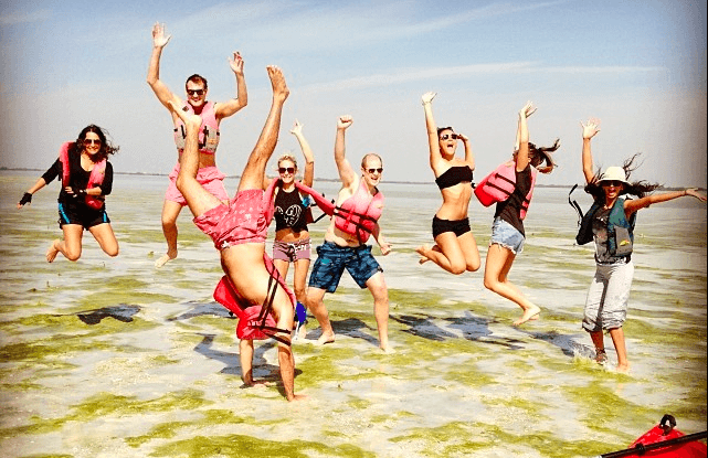 Jump in the Eastern Mangroves, Abu Dhabi!