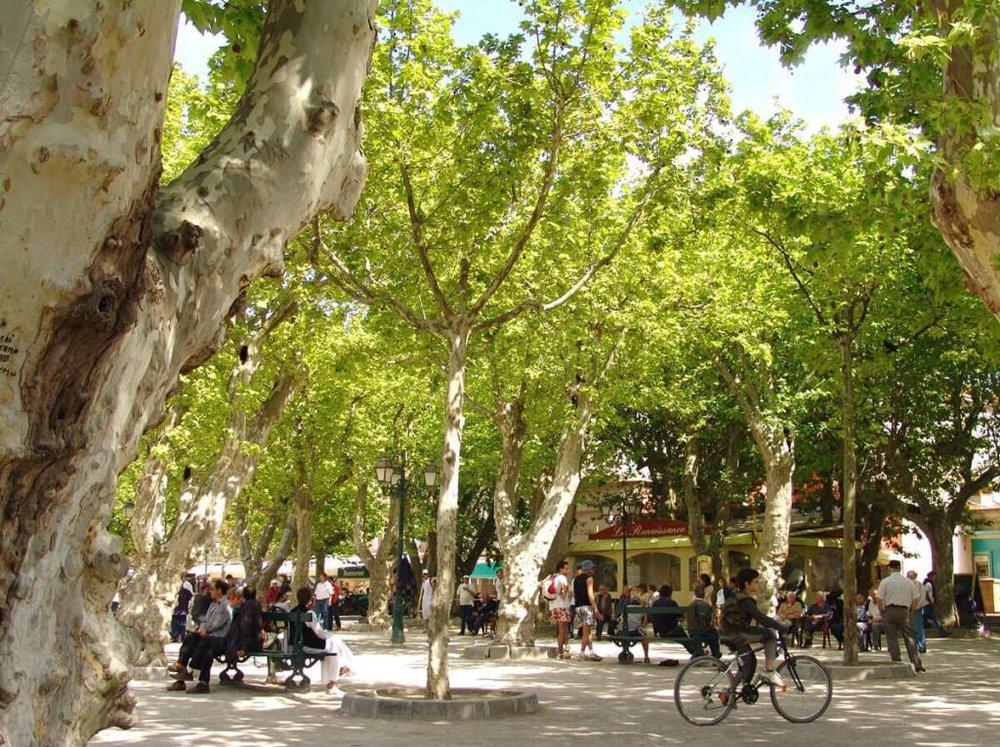 Ultimate Guide to Visit Saint Tropez like a Local - Place des Lices Saint Tropez