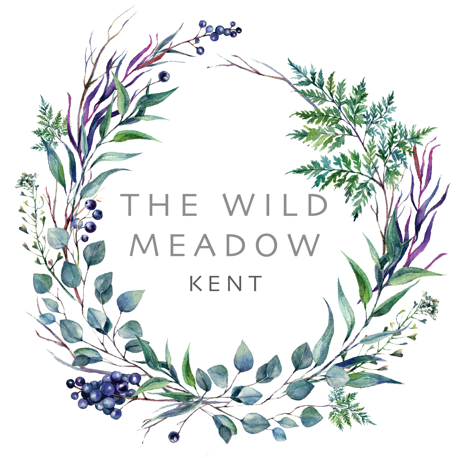 The Wild Meadow