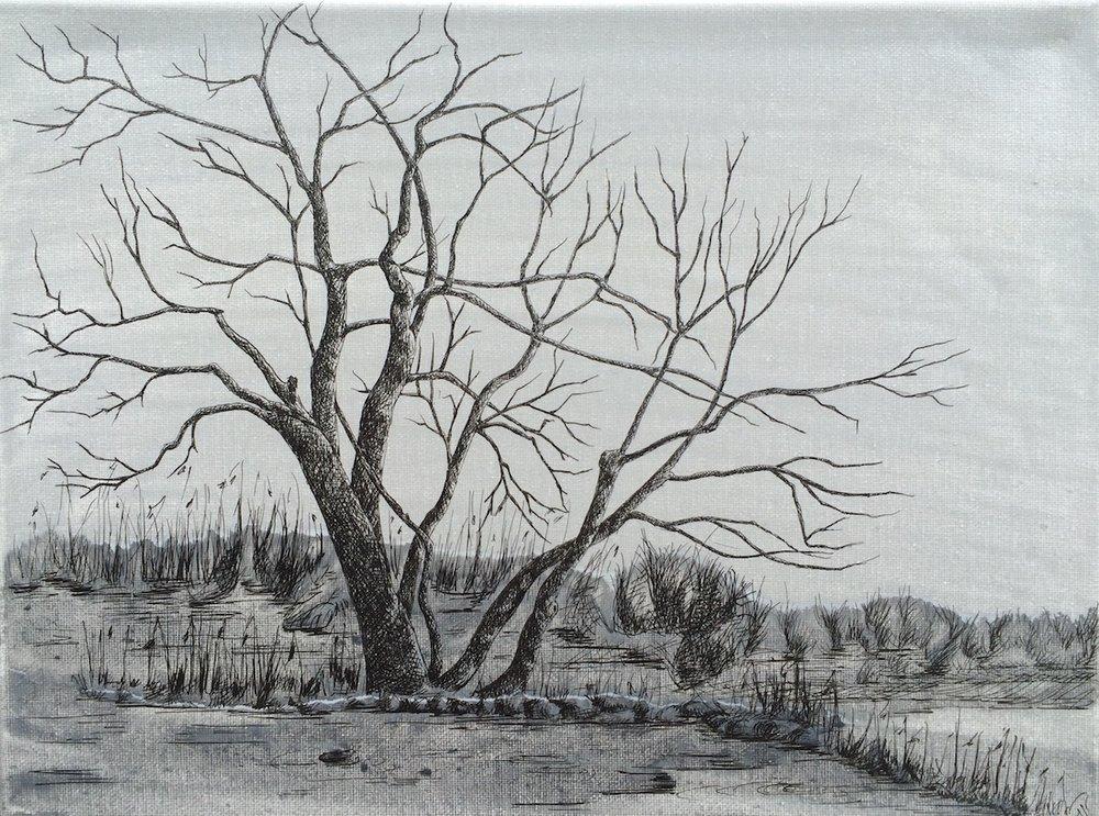 Acrylique & Plume sur toile, 40 cm X 30cm, 2016.JPG