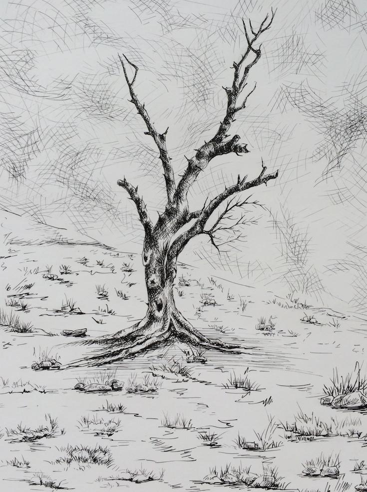 Plume sur papier,24cm X 18cm, 2016.jpg
