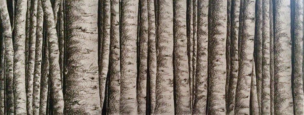 Plume sur toile, 50cm X 20cm, 2016.jpg