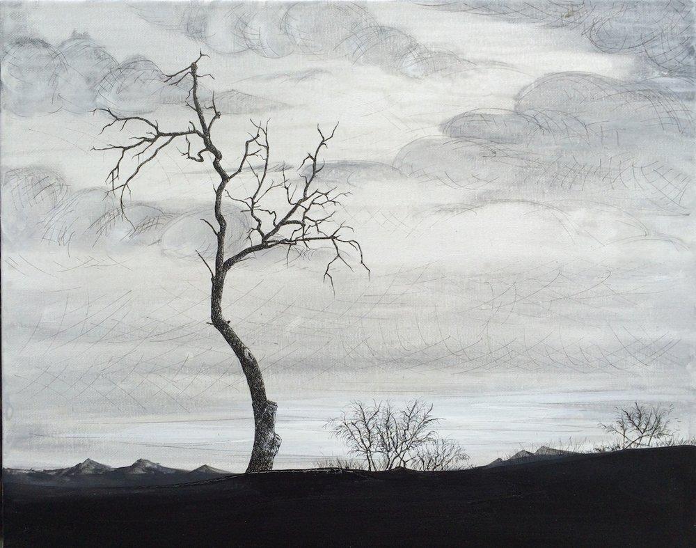Plume sur toile, 50cm X 40cm , 2016.JPG