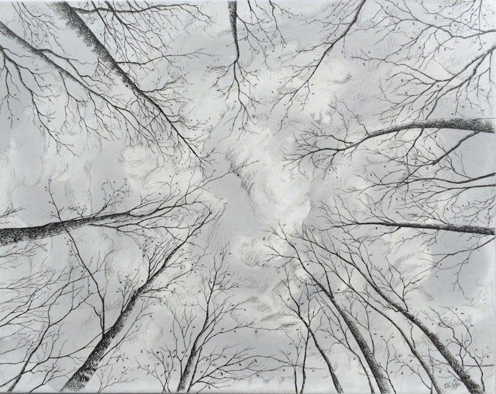 Plume sur toile, 50cm X 40cm, 2016 Photo; Ali Jafari.JPG