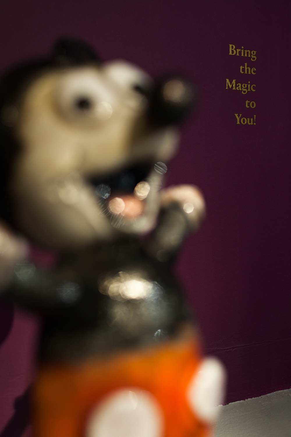 We Bring the Magic to You