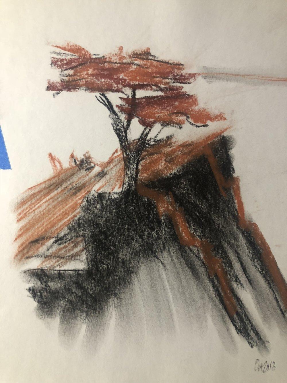 Study, 8x10 inches, Conte Crayon