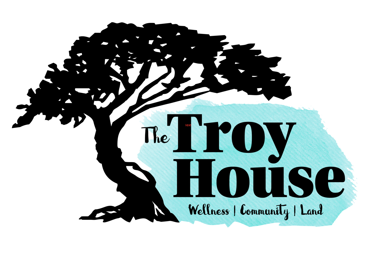 The Troy House