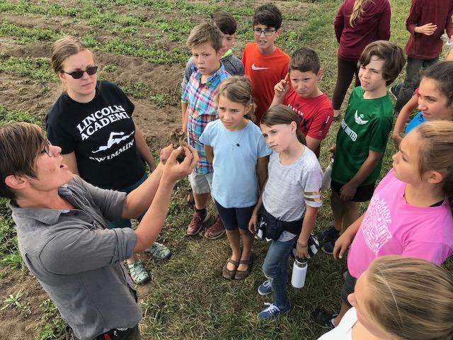 Twin Villages Foodbank Farm (Fiscal Agent: Damariscotta River Association)