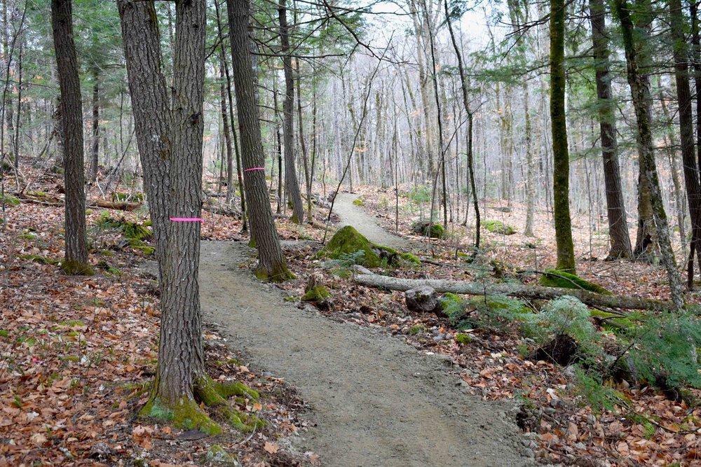 Katahdin Area Trails