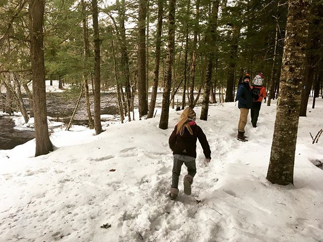Last weekend was Winter Fun Day at Hirundo: dog sled rides, curling, river walks, snowshoeing, cross country skiing, snow sculptures, and more! Just ten minutes from UMO, Hirundo is free to the public and open seven days a week.