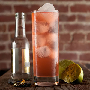 Sippiwissett-Gin-Tonic.jpg