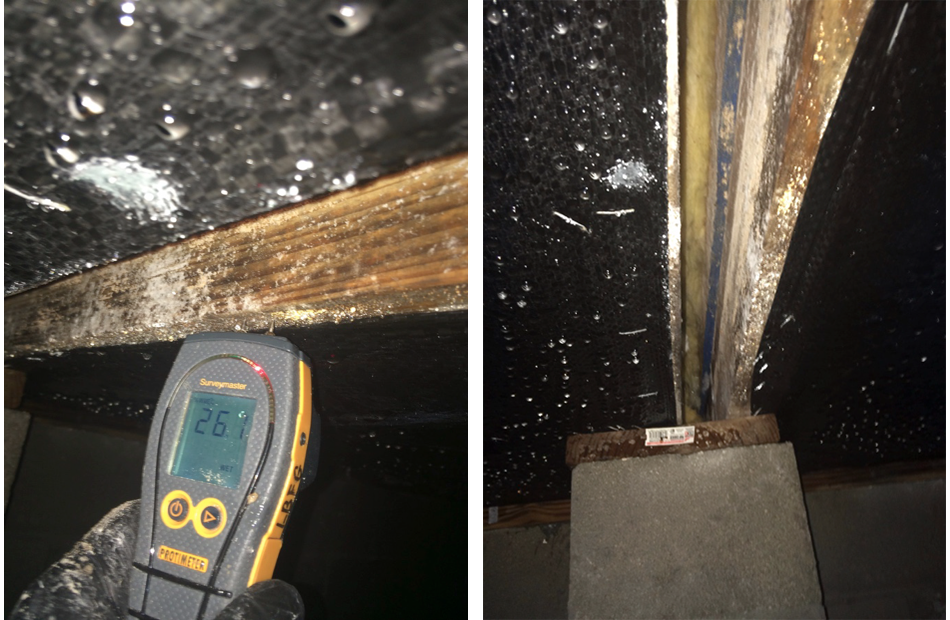 Figure 4:  This is the marriage wall between two modular boxes in an assisted living facility in Florida. Moisture accumulation and condensation occurred not only on the belly wrap but also on the wood found in the marriage wall cavity.