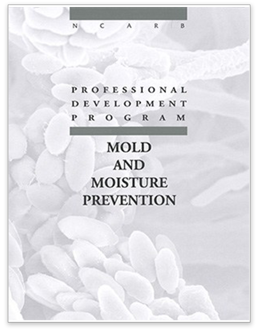 Mold and Moisture Prevention@2x.png