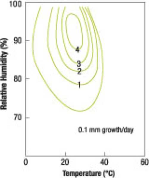 Figure 8:  Rates of growth for  Aspergillus ruber  show how a 10 percent increase in RH (72 to 79 percent) can increase the mold growth rate by 1,000 percent (0.1 to 1.0 mm per day).  Source: G. W. Brundrett, 1990.