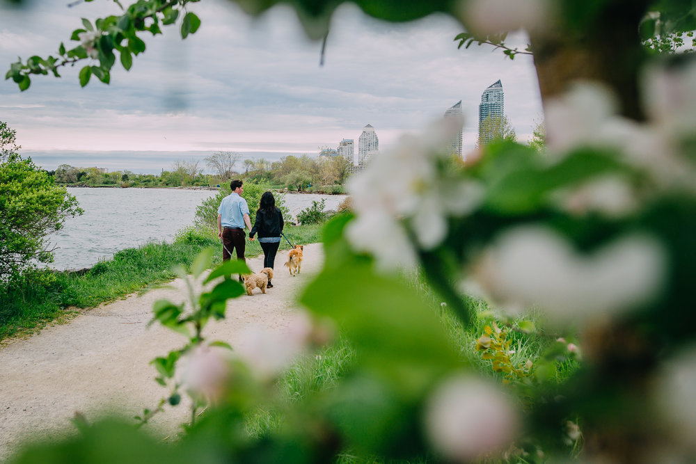 Torontoweddingphotographer-18.jpg