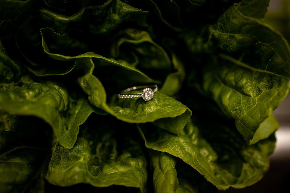 culinary-engagement-photos-15.jpg