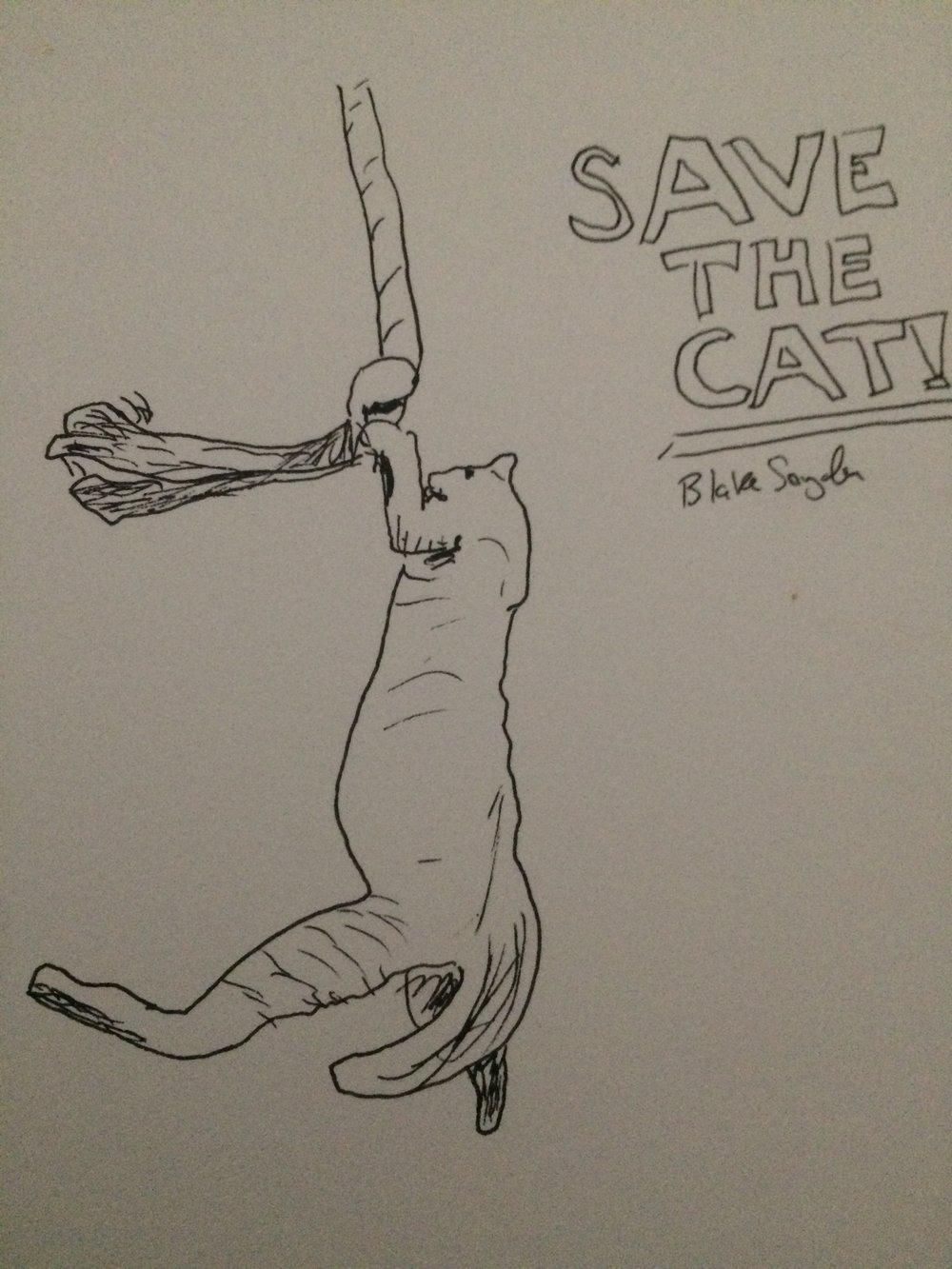 HangingCat.jpeg