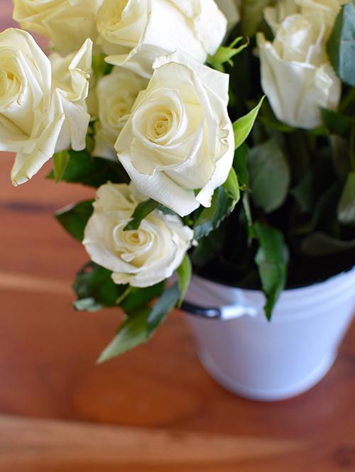 Blooms5.jpg