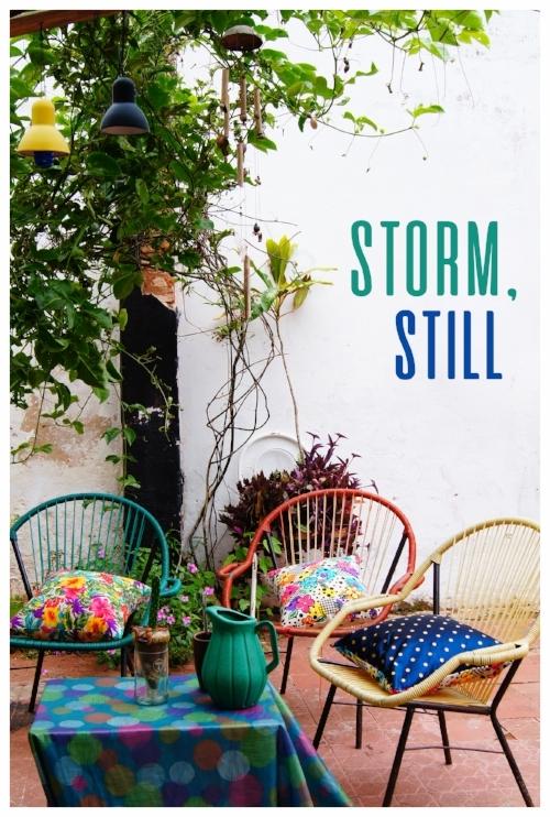 Storm-Still-3a.jpg