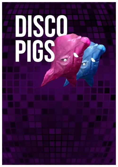 Disco-Pigs.jpg