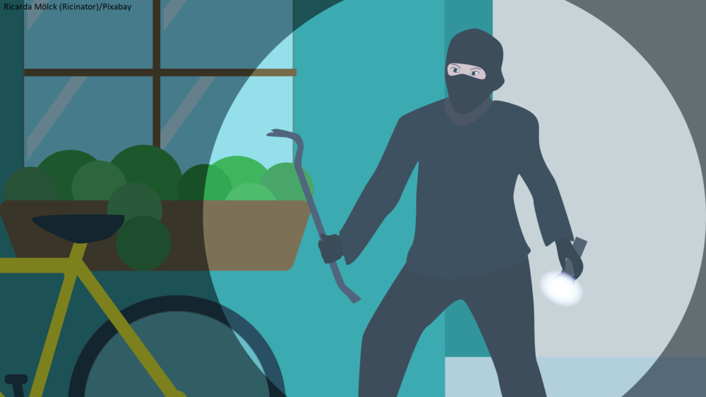 robber 2.png