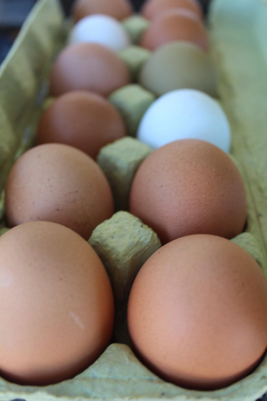 Chicken eggs, $6