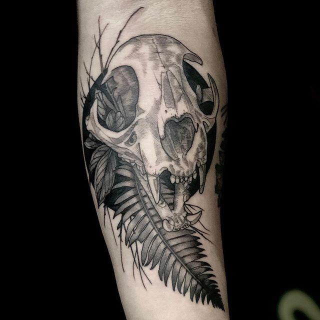 Cat skull fern combo!