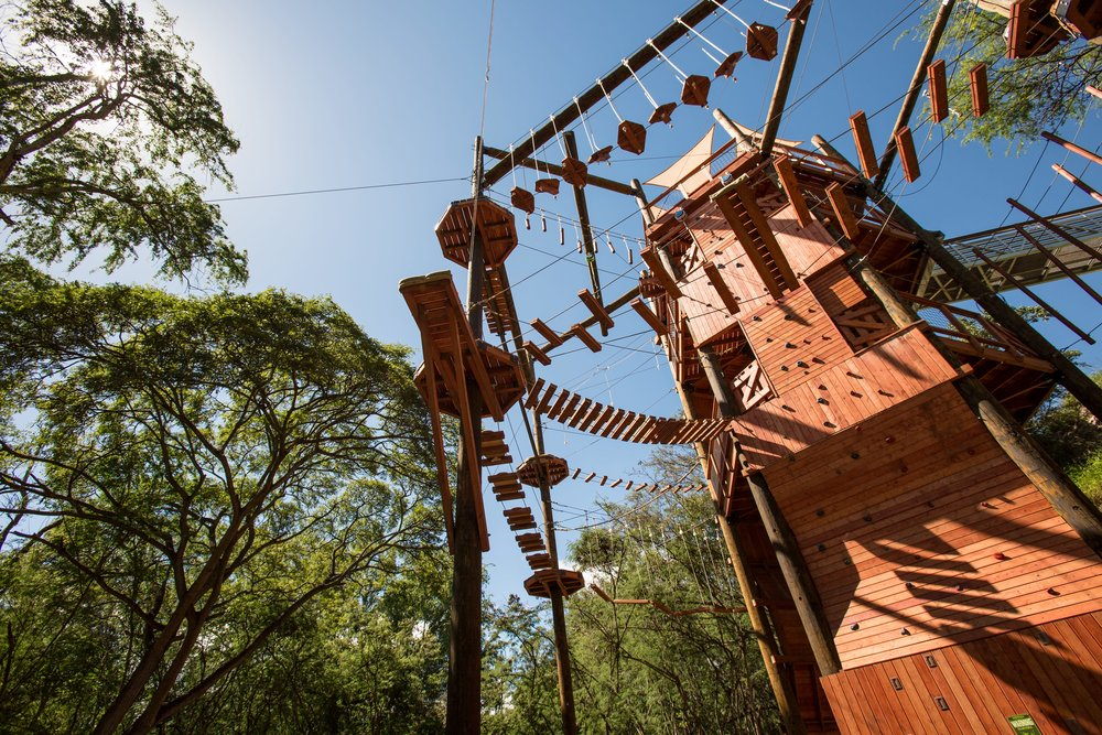 Coral Crater - Adventure Park - 17-min.jpg