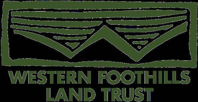 WFLT_Logo_Green (1).png