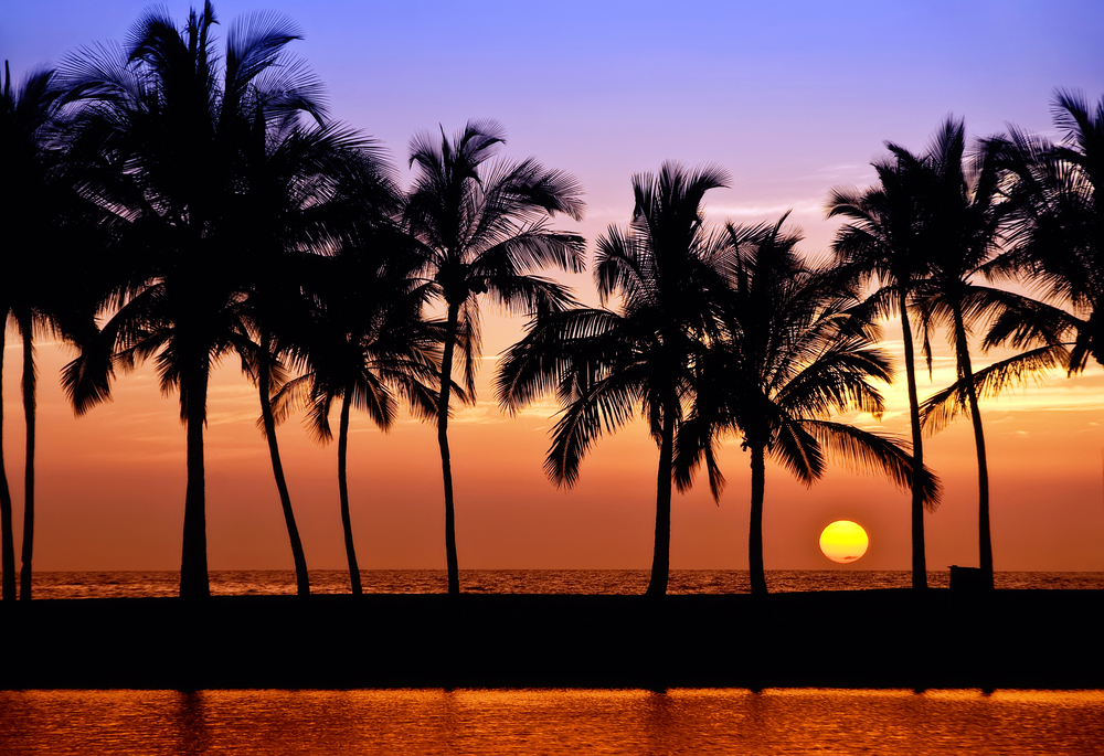 Ready to start your next Big Island Real Estate journey? -