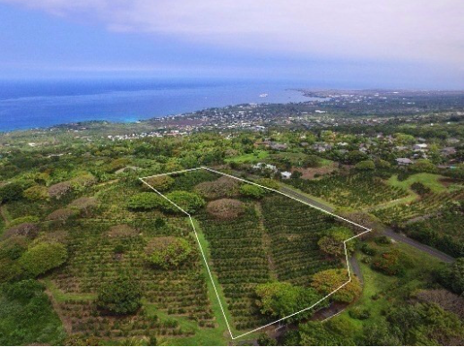 Vacant land available through LUVA Real Estate