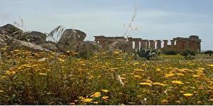 Sicily-2018-10.jpg