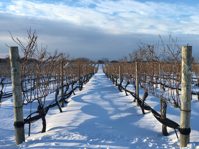 Wine Tasting On The North Fork - Head to the anti-Hamptons for wine tasting on the North Fork. Gorgeous any time of year, this is the perfect romantic getaway (or an ideal solo trip to drown your sorrows). Stay at a cozy B&B and feel hundreds of miles away from the city.