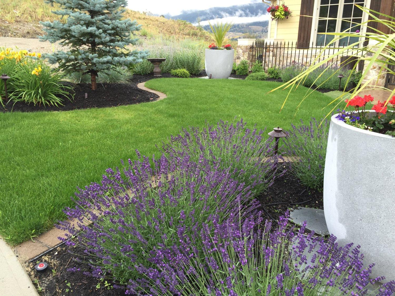 Landscape Design Tips Front Yard Curb Appeal Nokomis Landscaping