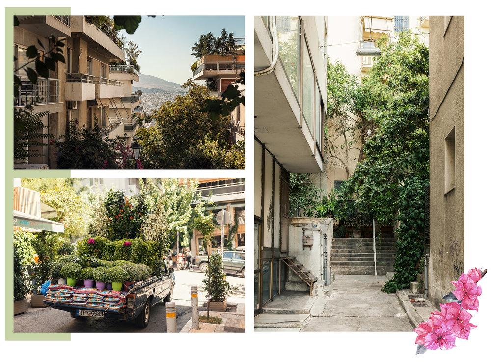 Greece1-copy-2.jpg